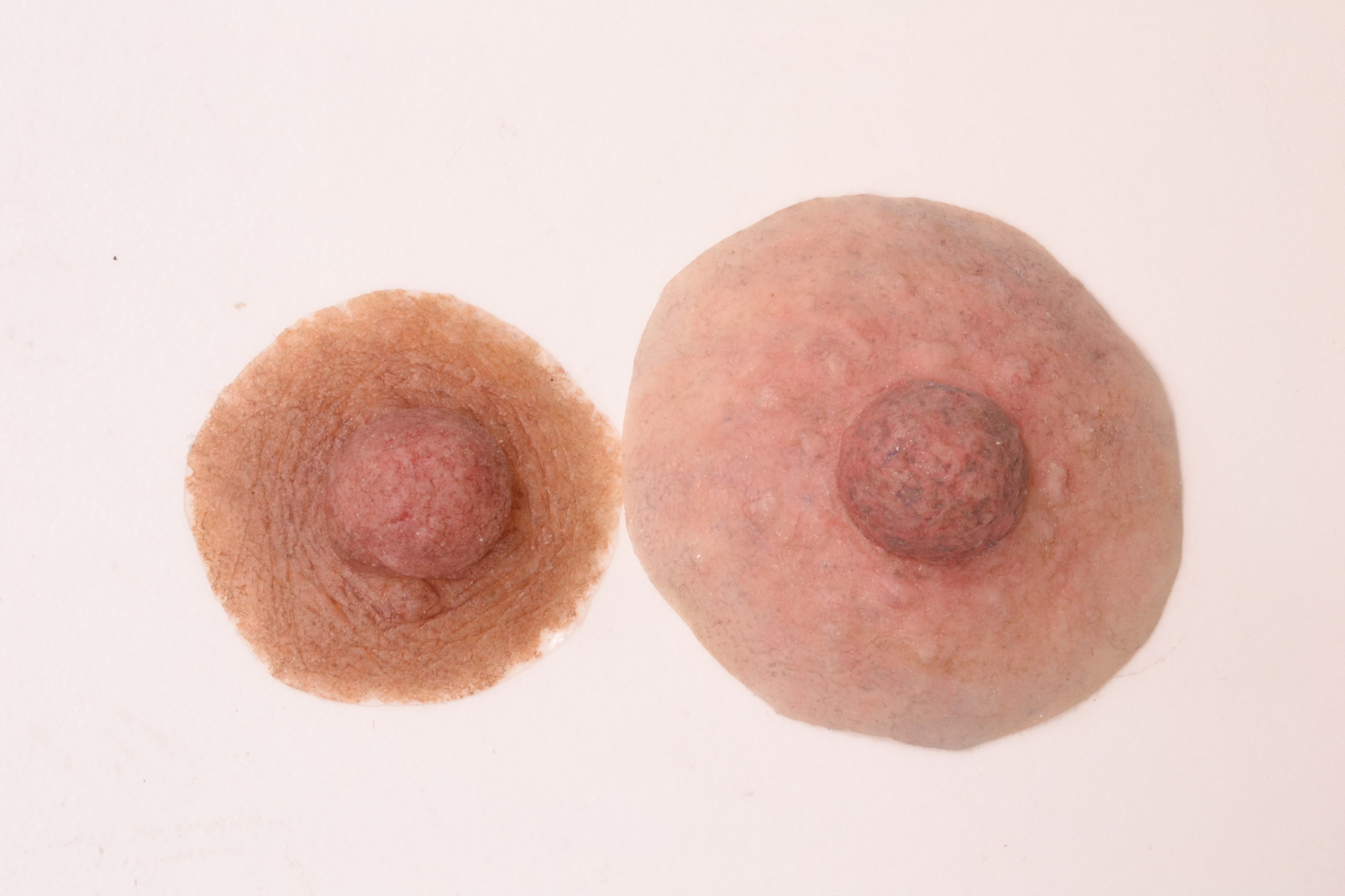 Examples_of_Custom_Nipple_Prostheses